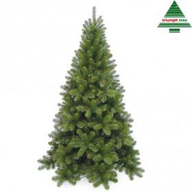 Árvore de natal tuscan, verde, 260 cm